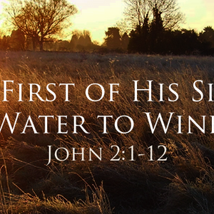 The First of His Signs: Water to Wine - Audio