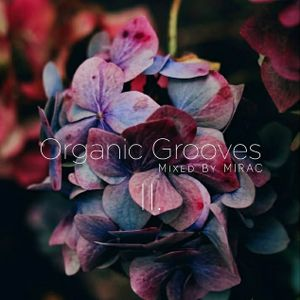 Organic Grooves II. Mixed By MIRAC (2021.04.18.)