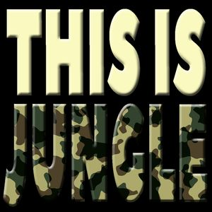 Jamie Bostron - This Is Jungle 4