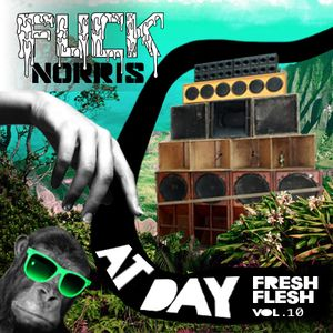 FUCK NORRIS at day (fresh flesh vol.10)