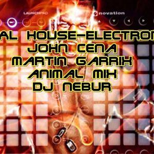 TOTAL HOUSEMIX (INTRO JOHN CENA SISTEMA CON VIRUS) - DJ NEBUR