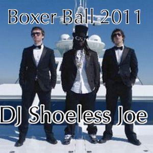 Boxer Ball 2011