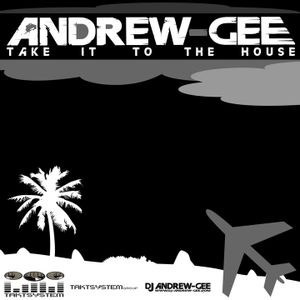 ANDREW-GEE , TAKE IT TO THE HOUSE , PROMO 2010