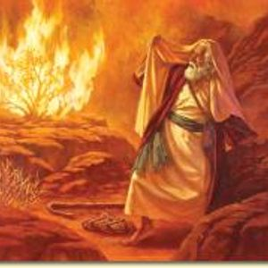 Underdog Excuse 5 - Overcoming Insecurities : Moses