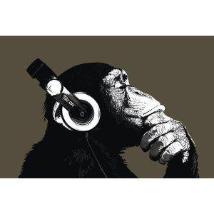 Headphones on, dude