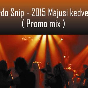 Ricardo Snip - 2015 Májusi Kedvencek (Promo Mix)