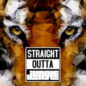 DJ M.E.L - STRAIGHT OUTTA JUNGLE