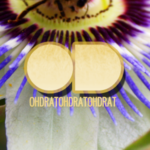Oh Drat Podcast April/May 2011