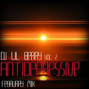 Dj Lil Berry - Antidepressive mix, vol. 2 (February 2011)