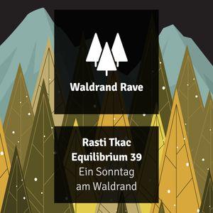 Equilibrium 040 (Ein Sonntag am Waldrand) [2020 09 06]