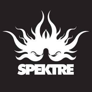 Spektre (Live) @ Harry Klein | 13-08-10 (1st Hour)