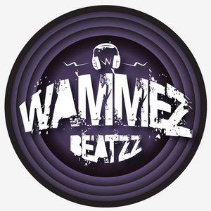 Wammes Beatzz February 2013 mix (set)