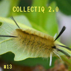 Collectiq 2.0 #13: Does the word duh mean anything to you?