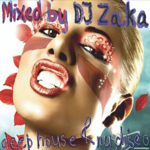 Deep House & Nu Disco Set Mixed by DJ Zaka at Peronas Bar Vilnius 12th March 2016