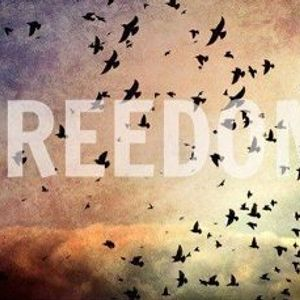 Freedom: From Religious Law