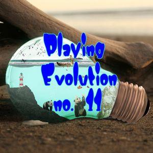 Playing Evolution no. 11