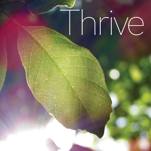 Thrive - Principle of the First