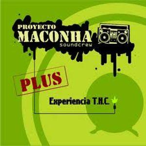 Proyecto Maconha entrevista realizada con motivo de los 11 años de transformación del Faro de Orient