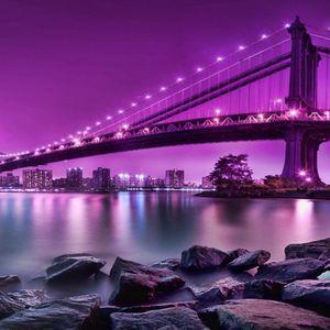 Pitcher_Purple Music#2
