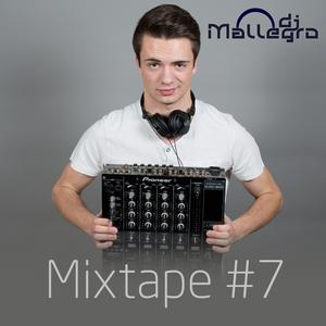 DJ Mallegro - Electro House Minimix #7