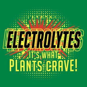 DJ Church - Electrolyte (1-22-06)