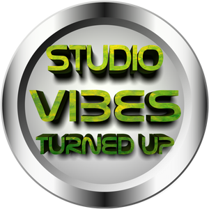 DJLEROY STUDIO VIBES TURNED UP Tv 04/06/2016