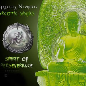 NN- Spirit of Perseverance