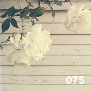 Broadview Radio 075 w/ SoulBrigada Guest Mix