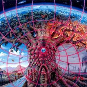 Living Synchronistically II