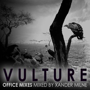 The Vulture Office Mixes - Vol 1 (Mixed by Xander Milne)