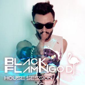 Session Black Flamingo