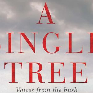 A Single Tree: voices from the bush