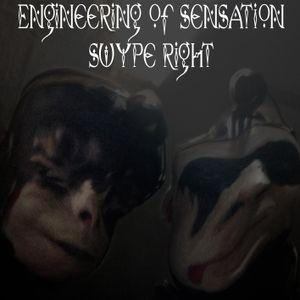 Swype Right - Engineering Of Sensation
