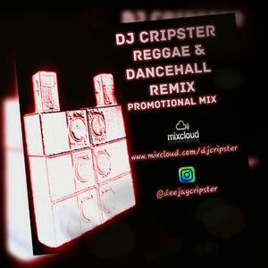 Dj Cripster - Reggae & Dancehall Remix (Promo Mix July 2017)