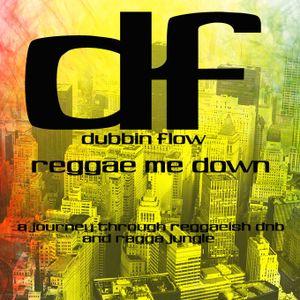 Dubbin Flow - Reggae me down (promo)