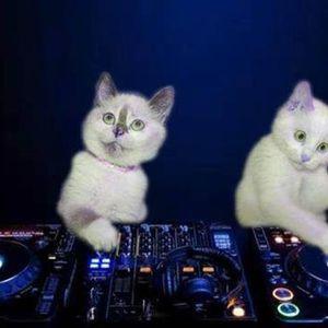 We Love Dance Parties — Boogie Sattva B2B Space Tiger