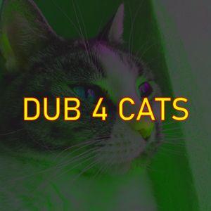 DUB 4 CATS