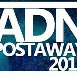 Edu Beat @ ADN Postaway 2015