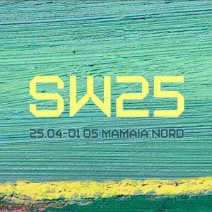 Kane Solo - Returning From Sunwaves 25 - Live Studio 808 Radio (Paravibe)