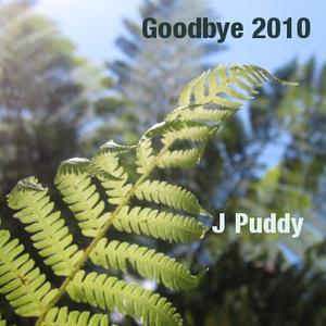 Goodbye 2010