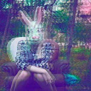 Freund der §onnE  -  follow the white Rabbit  29.11.14