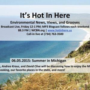 Summer in Michigan
