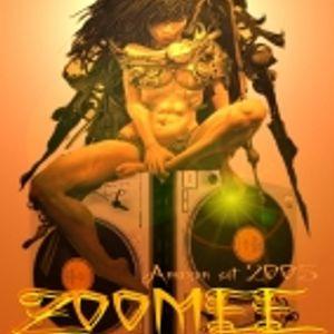 last digital arena 2005 - zoomee - oriental break bass set 30min cut