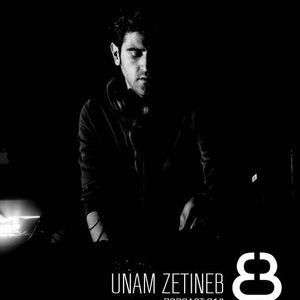 UNAM ZETINEB EINMAL PODCAST 012