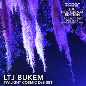 LTJ Bukem - Twilight Cosmic D&B Set @ Tipper & Friends, Spirit Of Suwannee Music Park 19th May 2017