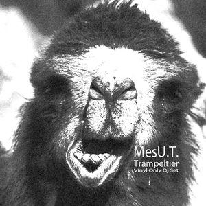 MesU.T. - Trampeltier (Vinyl Only)