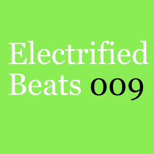 Electrified Beats 9 (2010)