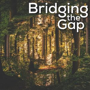 Bridging The Gap~April 14th, 2020: Indie Folk