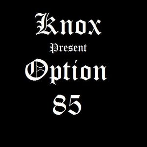 Knox Vaughn Ruger -OPTION 85 (FOR ALL F***IN MIXER)