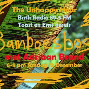 UH 9 Dec 2012 Adriaan Brand & Bamboesbos - met Toast & Erns